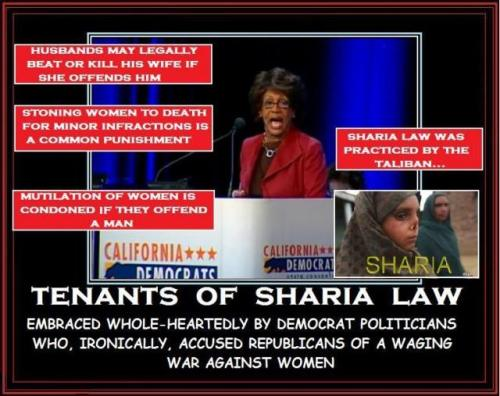 All Americans should take note of how Democrats vote on Sharia Law